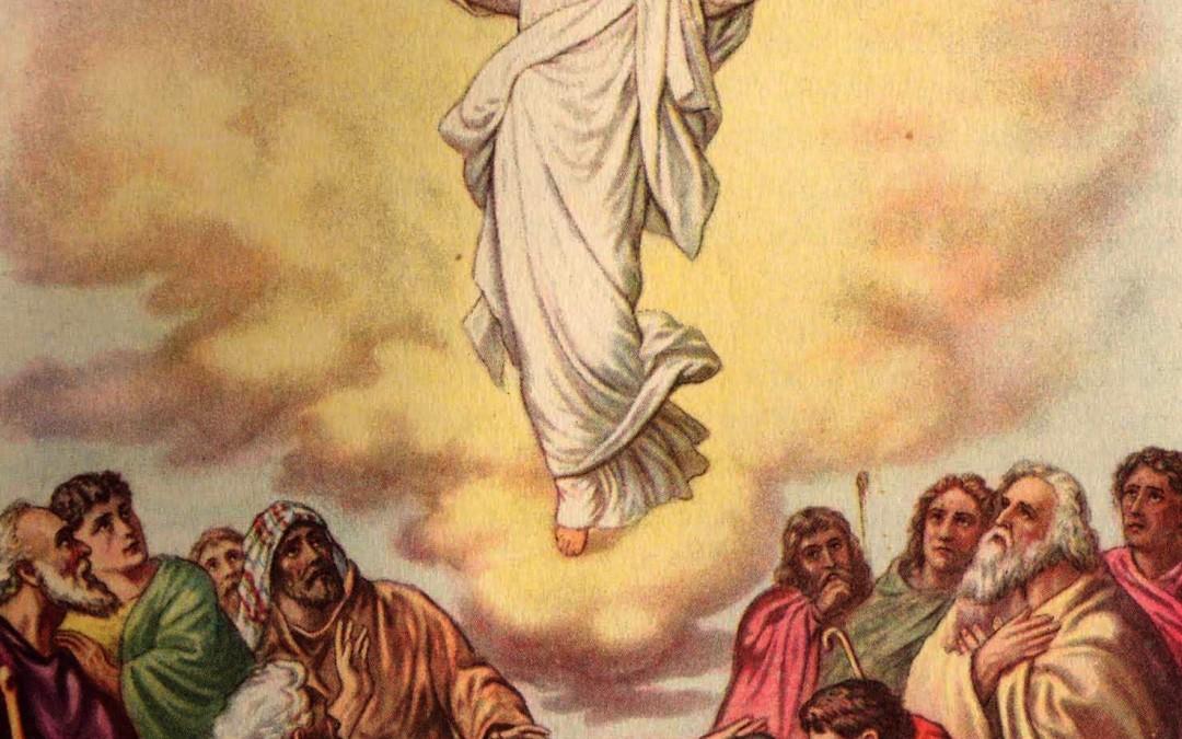 Processione dell'Ascensione 2015